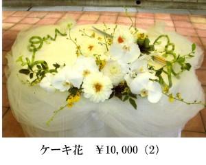 ケーキ10000 (2)
