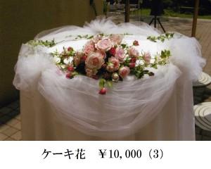 ケーキ10000 (3)