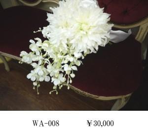 WA-008