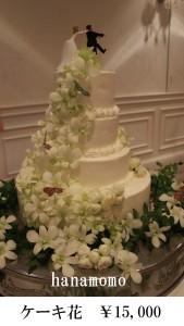 ケーキ15000