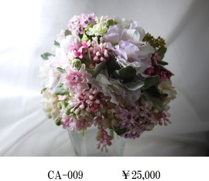 CA-009