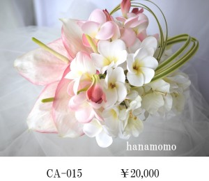 CA-015