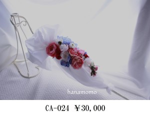 CA-024