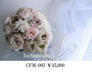 CFM-005