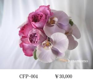 CFP-004
