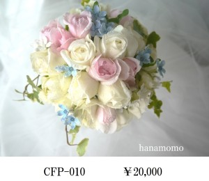 CFP-010