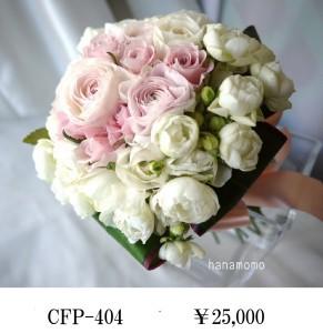 CFP-404