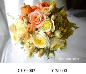 CFY-002