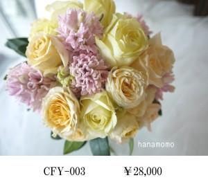CFY-003