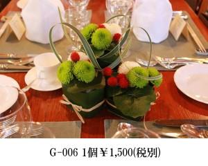 G-006