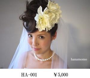 HA-001