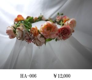 HA-006