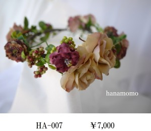 HA-007