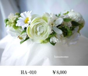 HA-010