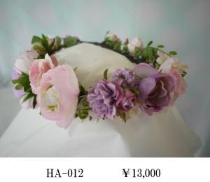 HA-012