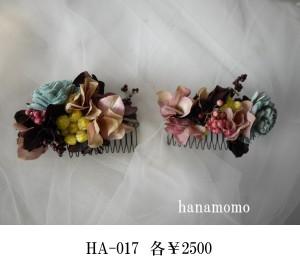 HA-017