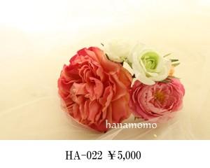 HA-022