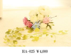 HA-025