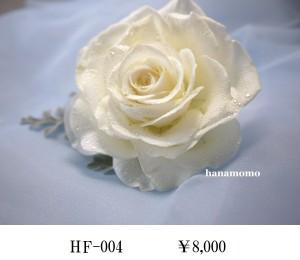 HF-004