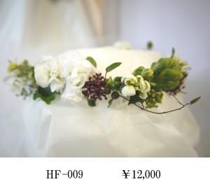 HF-009