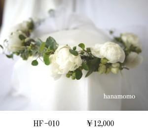 HF-010