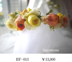 HF-013