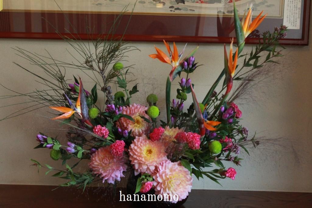 IMG_3065.jpgblog