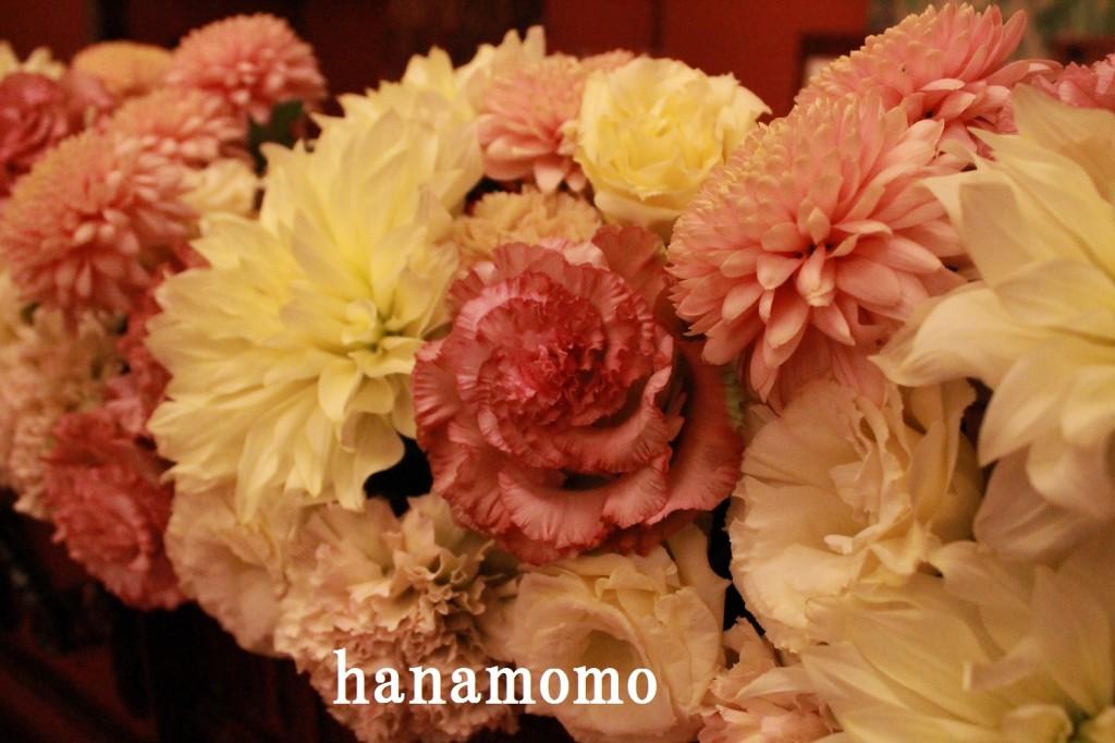 IMG_5051.jpgblog