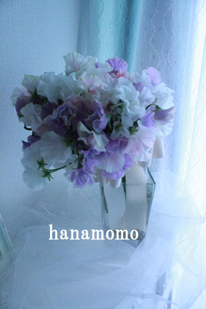 IMG_5932.jpgblog