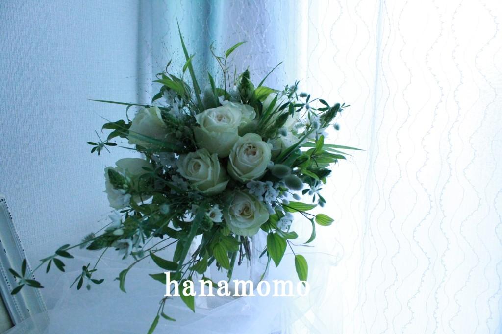 IMG_5935.jpgblog