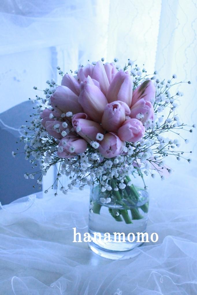 IMG_5961.jpgblog