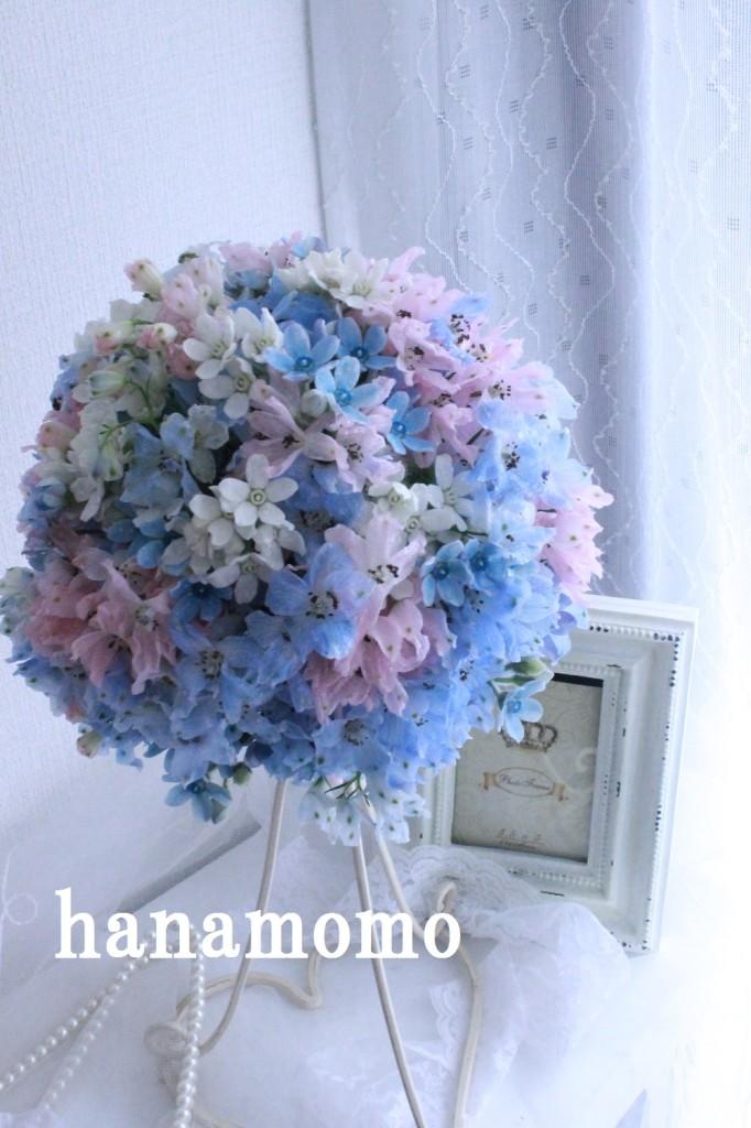 IMG_6186.jpgblog