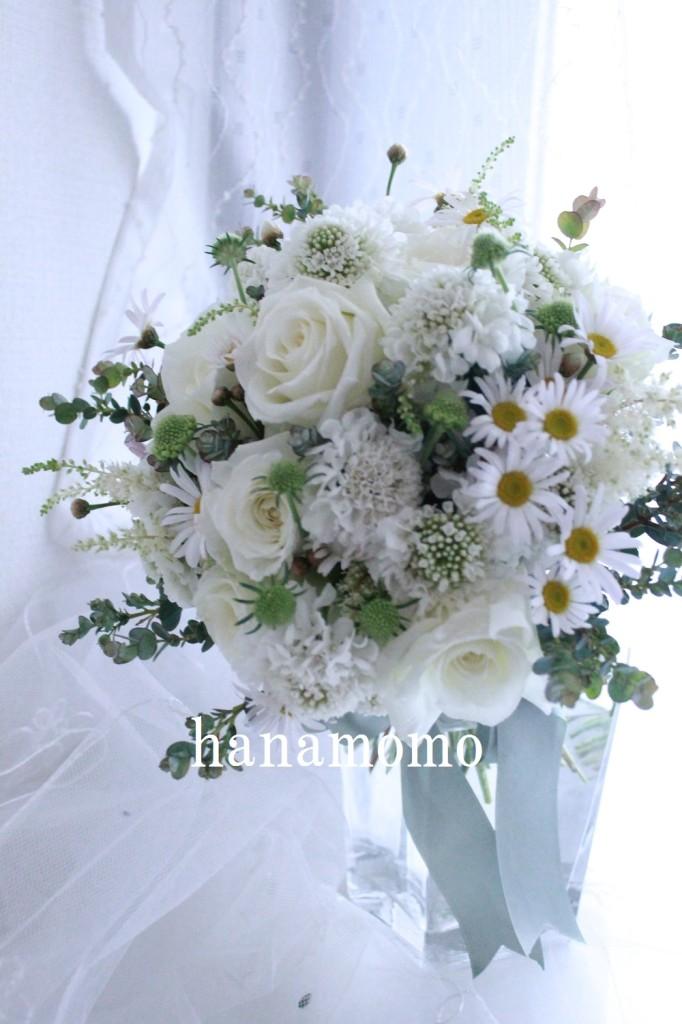 IMG_6623.jpgblog