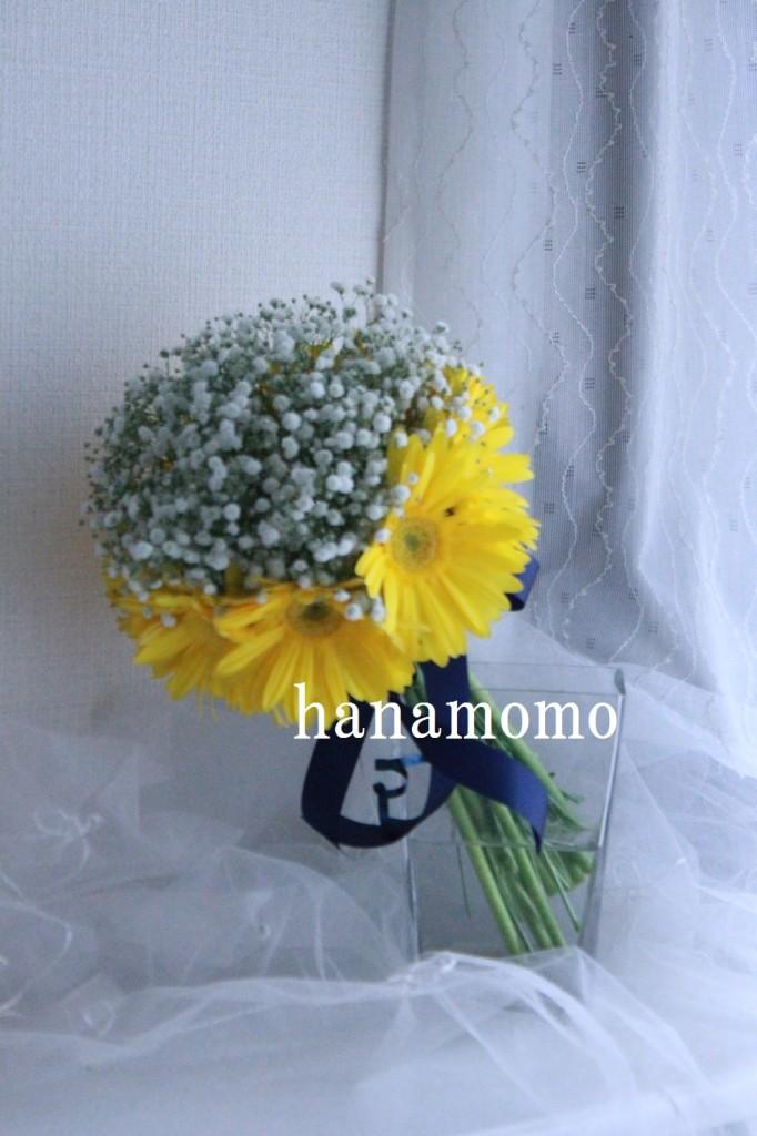 IMG_6702.jpgblog