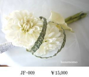 JF-009