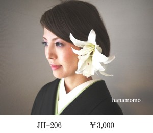 JH-206