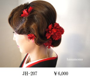 JH-207