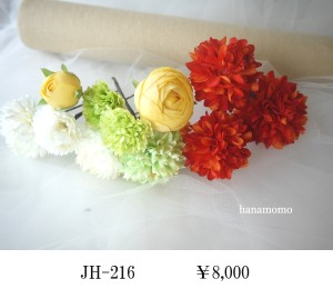 JH-216