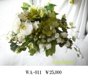 WA-011