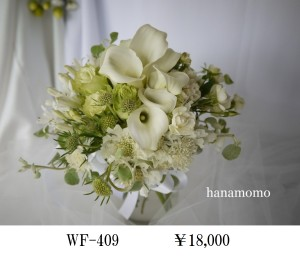 WF-409