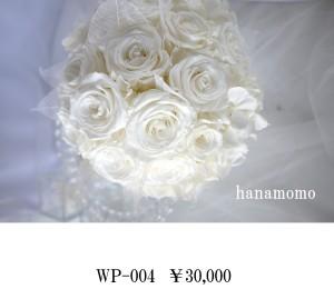WP-004