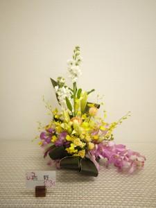 lsn-141110吉野