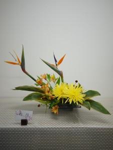 lsn-151020 石川