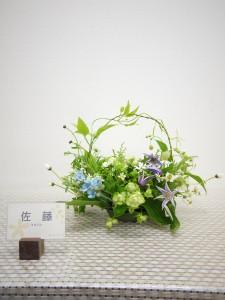 lsn-170403 佐藤(な)
