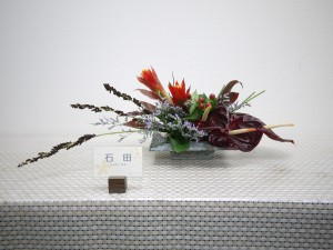 lsn-170515 石田